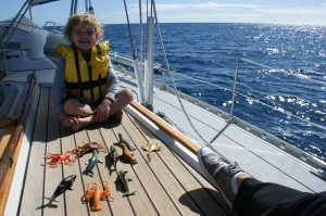Happy Harry with his Sea Creature collection.